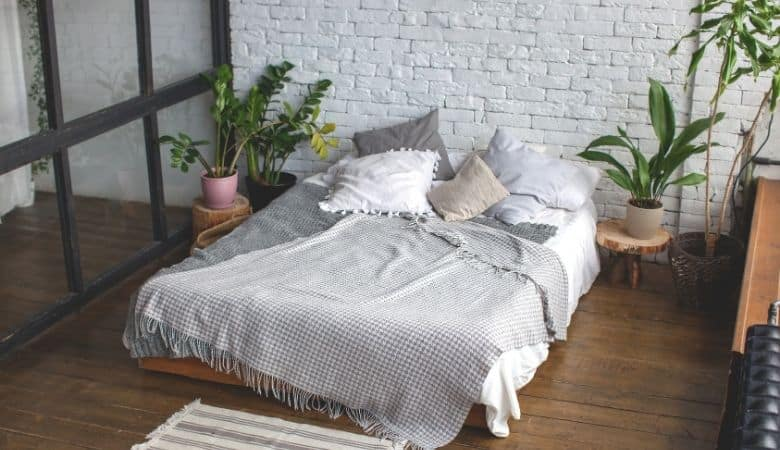 Is it Good or Bad to Have Plants in The Bedroom